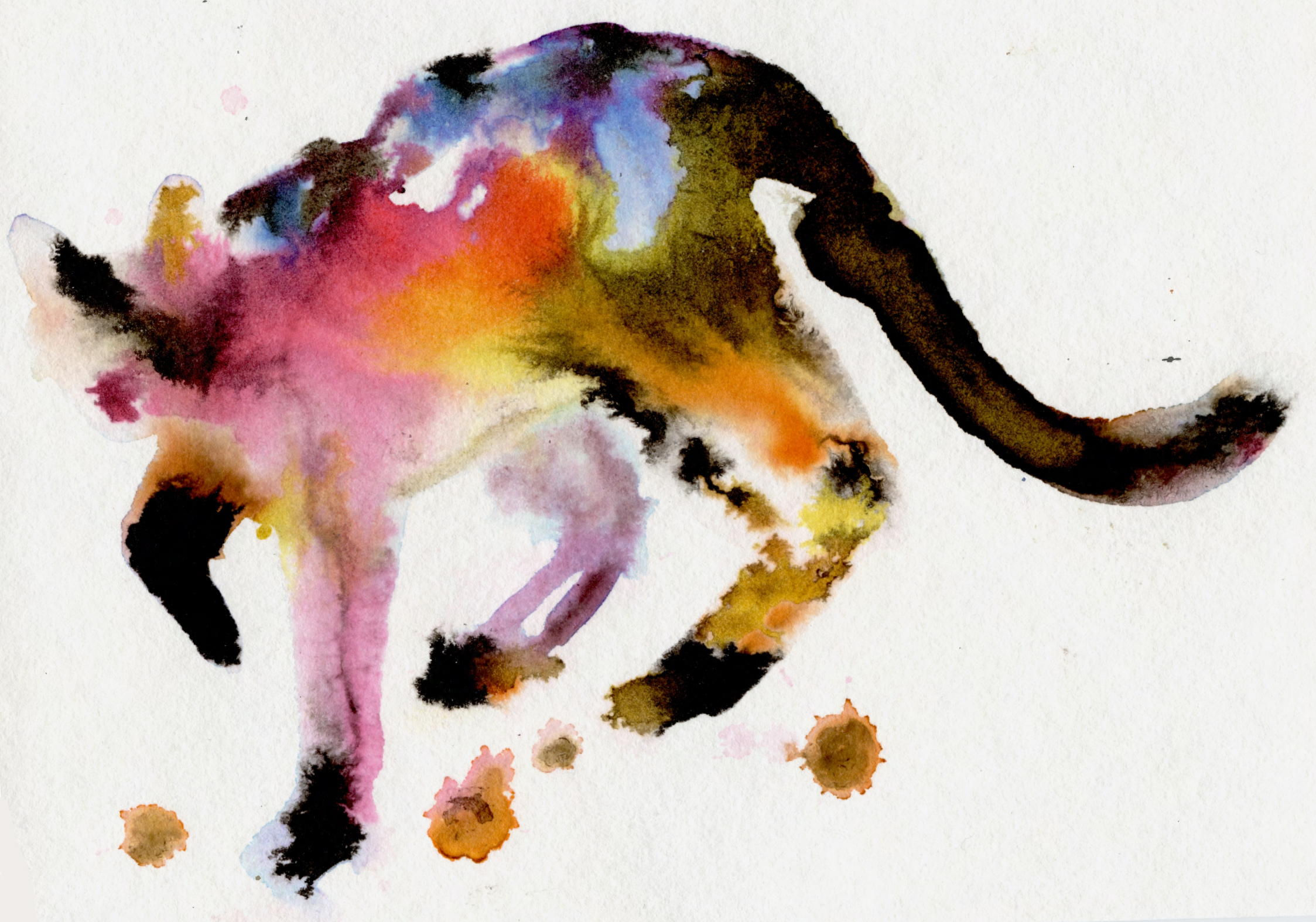 watercolor cosmic cat becky jewell.jpg