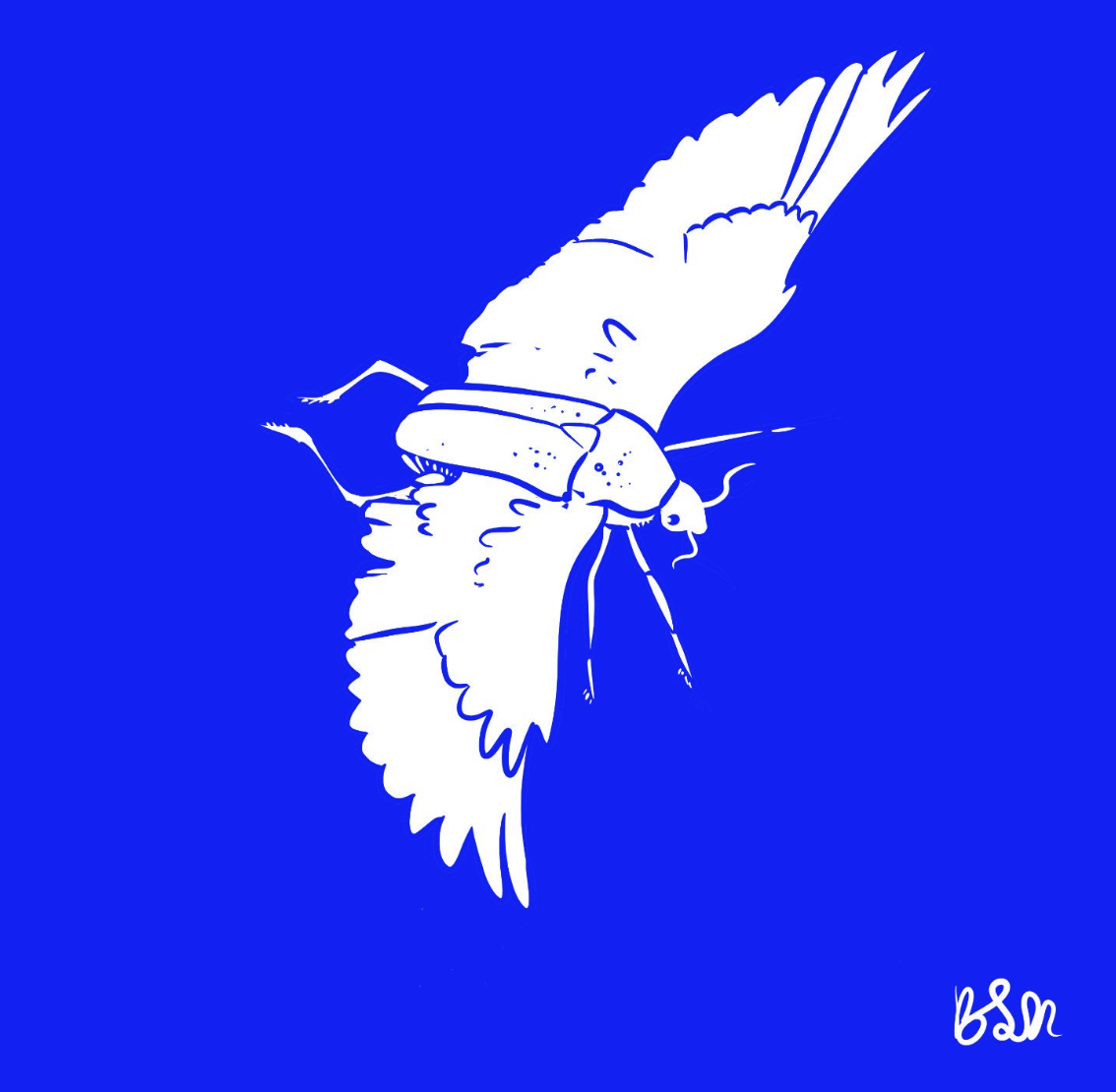 Winged Scarab becky jewell.png