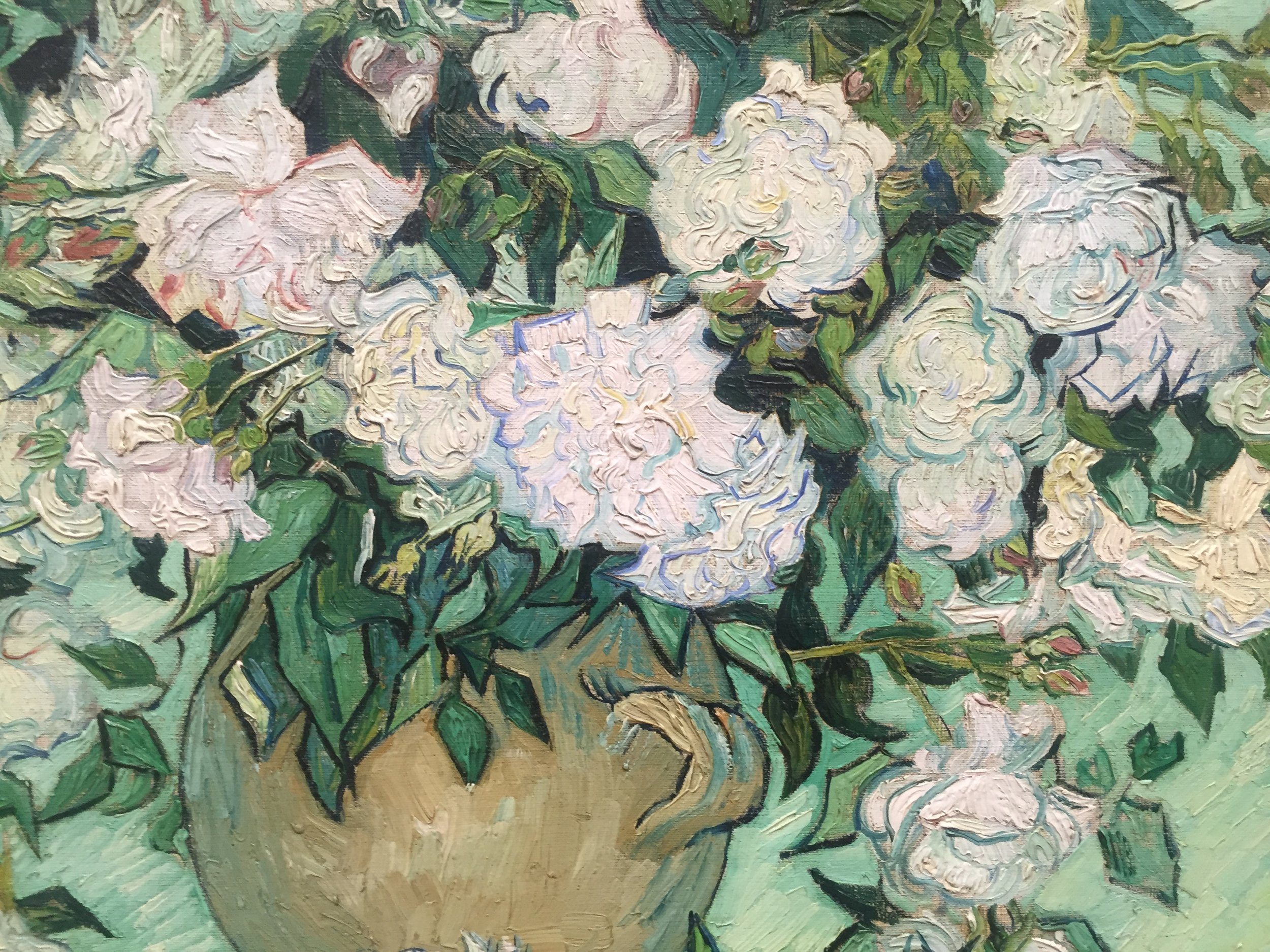van gogh white flowers up close.JPG