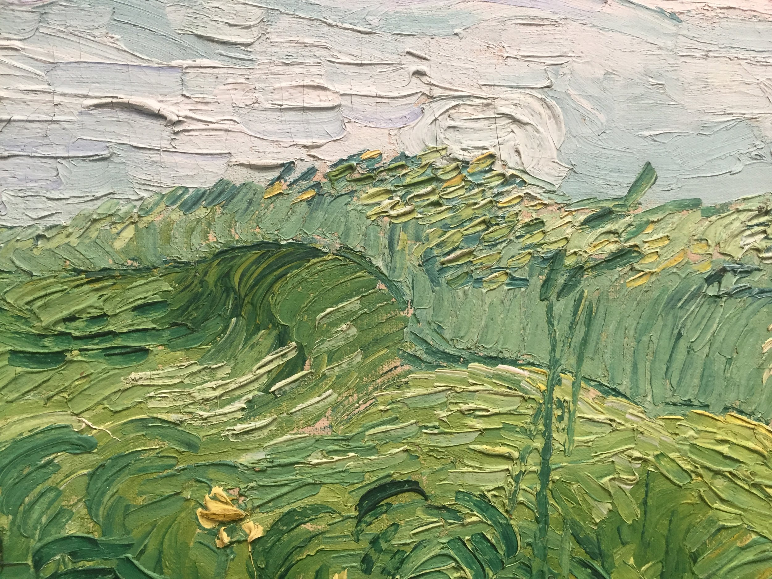 van gogh up close.JPG