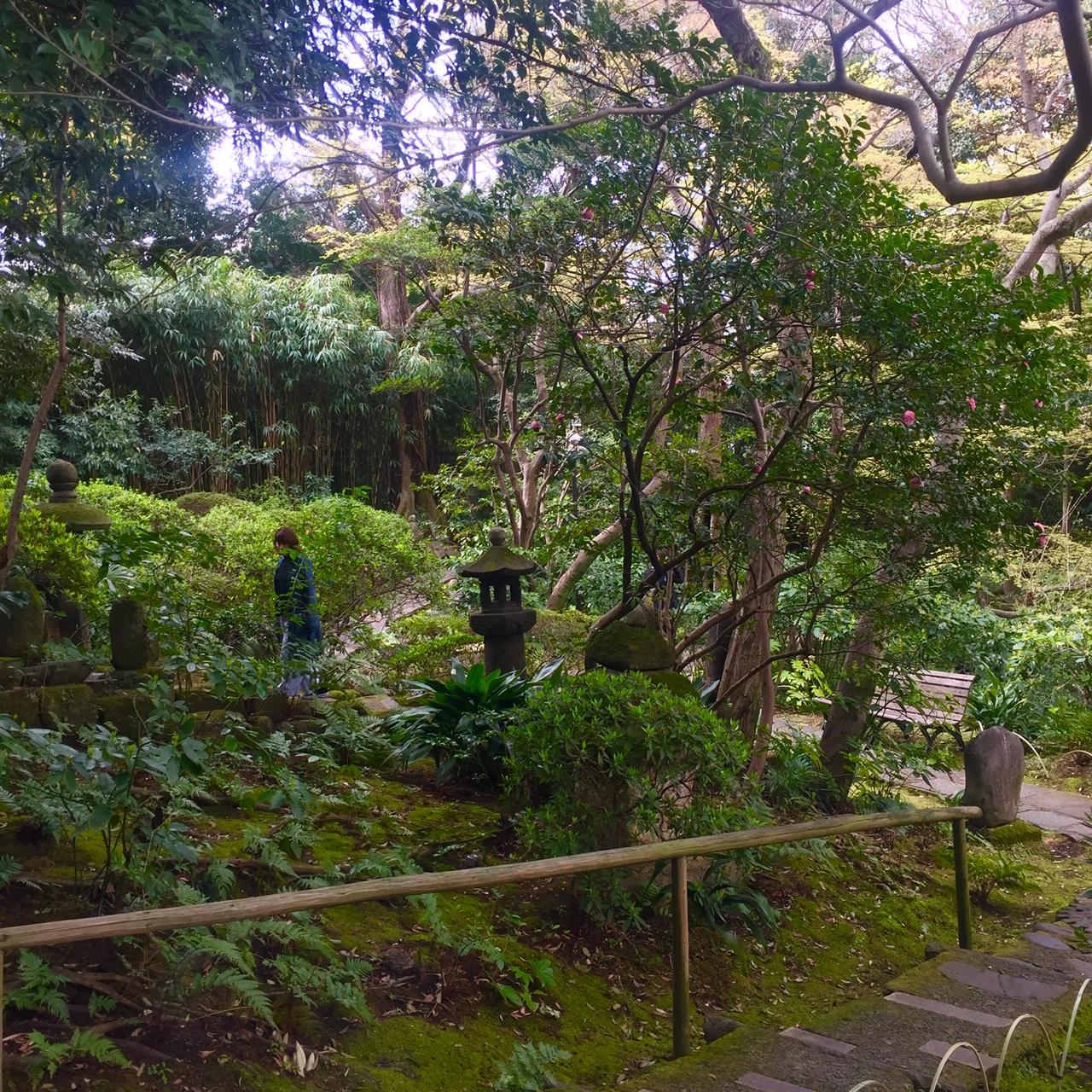 nezu museum gardens tokyo.jpg