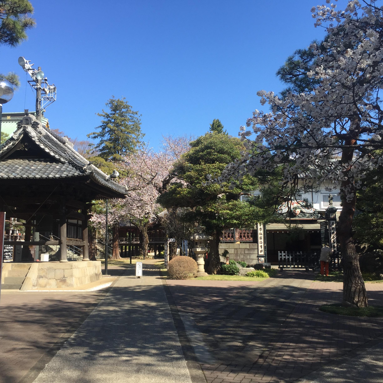 Myōhō-ji shin koenji japan.JPG