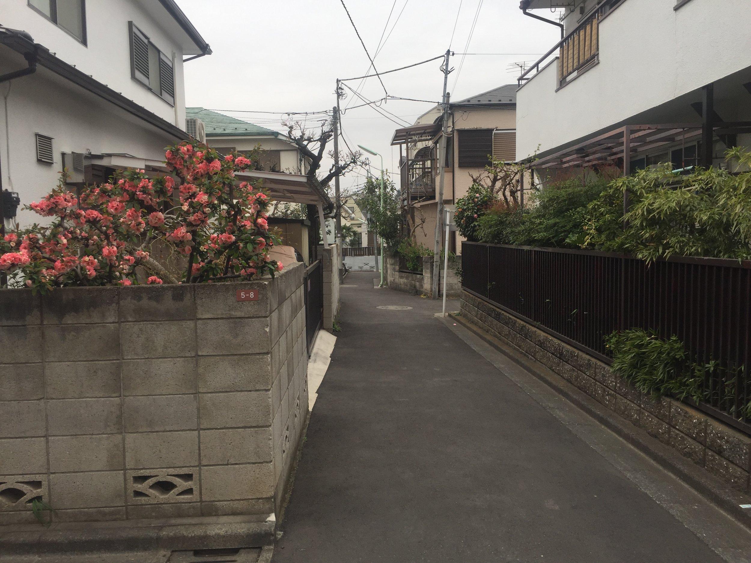 shin koenji tokyo japan alley.JPG