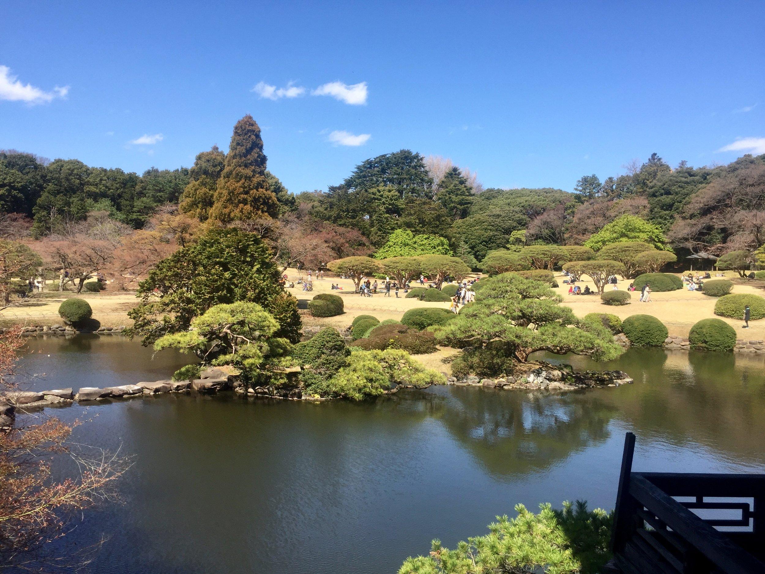 shinjuku gardens tokyo japan march 2019.jpg