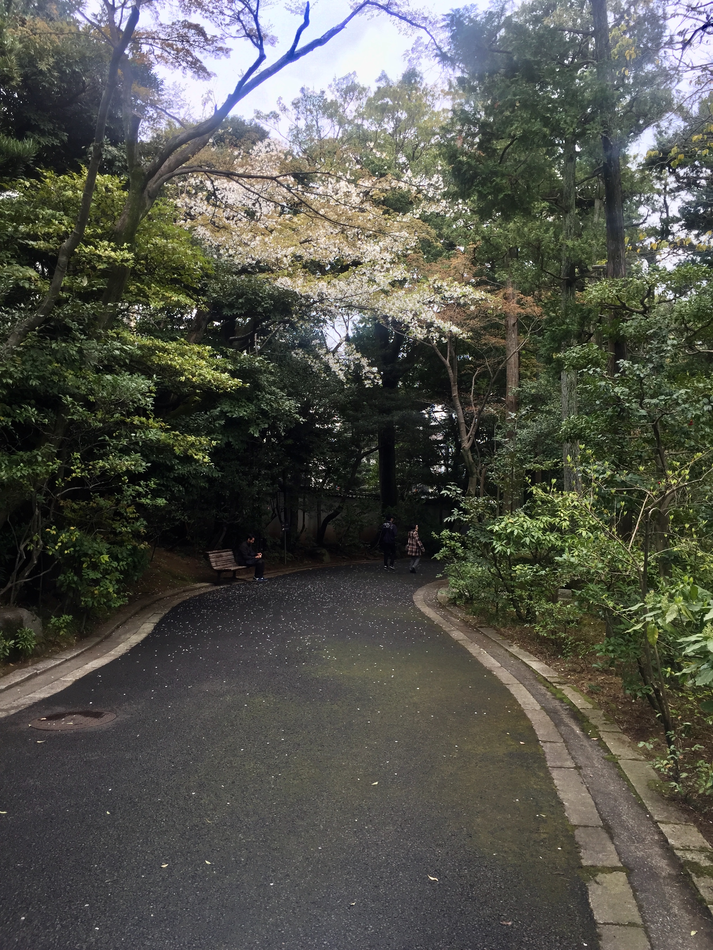 nezu garden path ginza.jpg