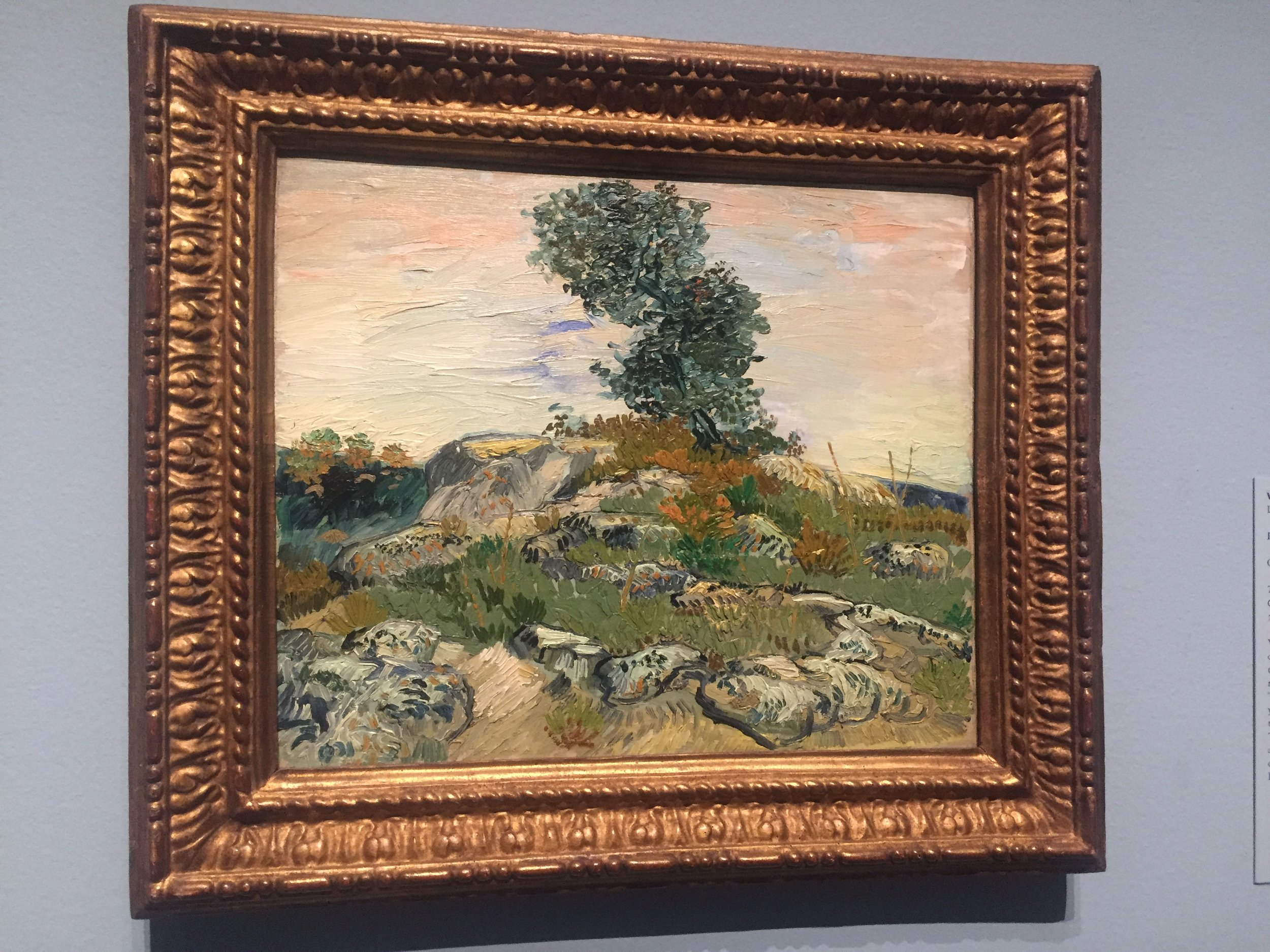 vincent van gogh the rocks houston.JPG