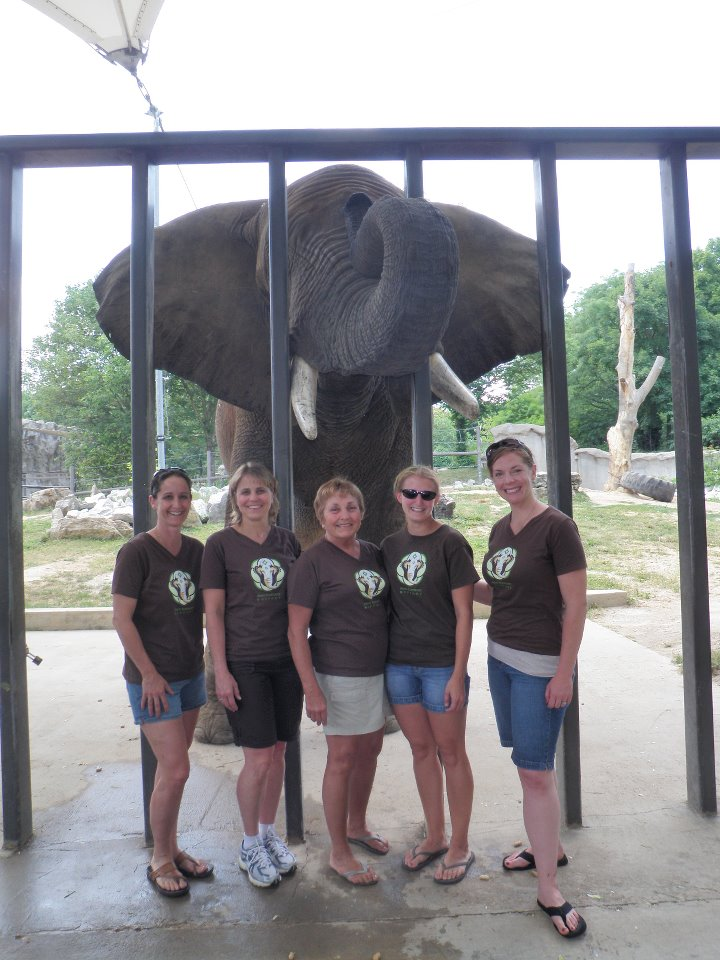 April, Sharon, Linda, Whitney (a volunteer), Gretchen, and Bud the elephant!