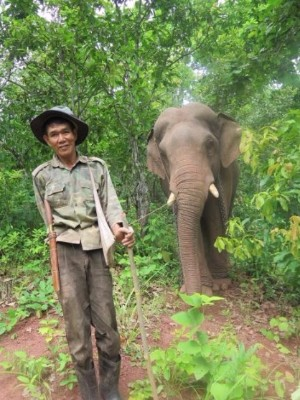 The first mahout and elephant to visit the garden