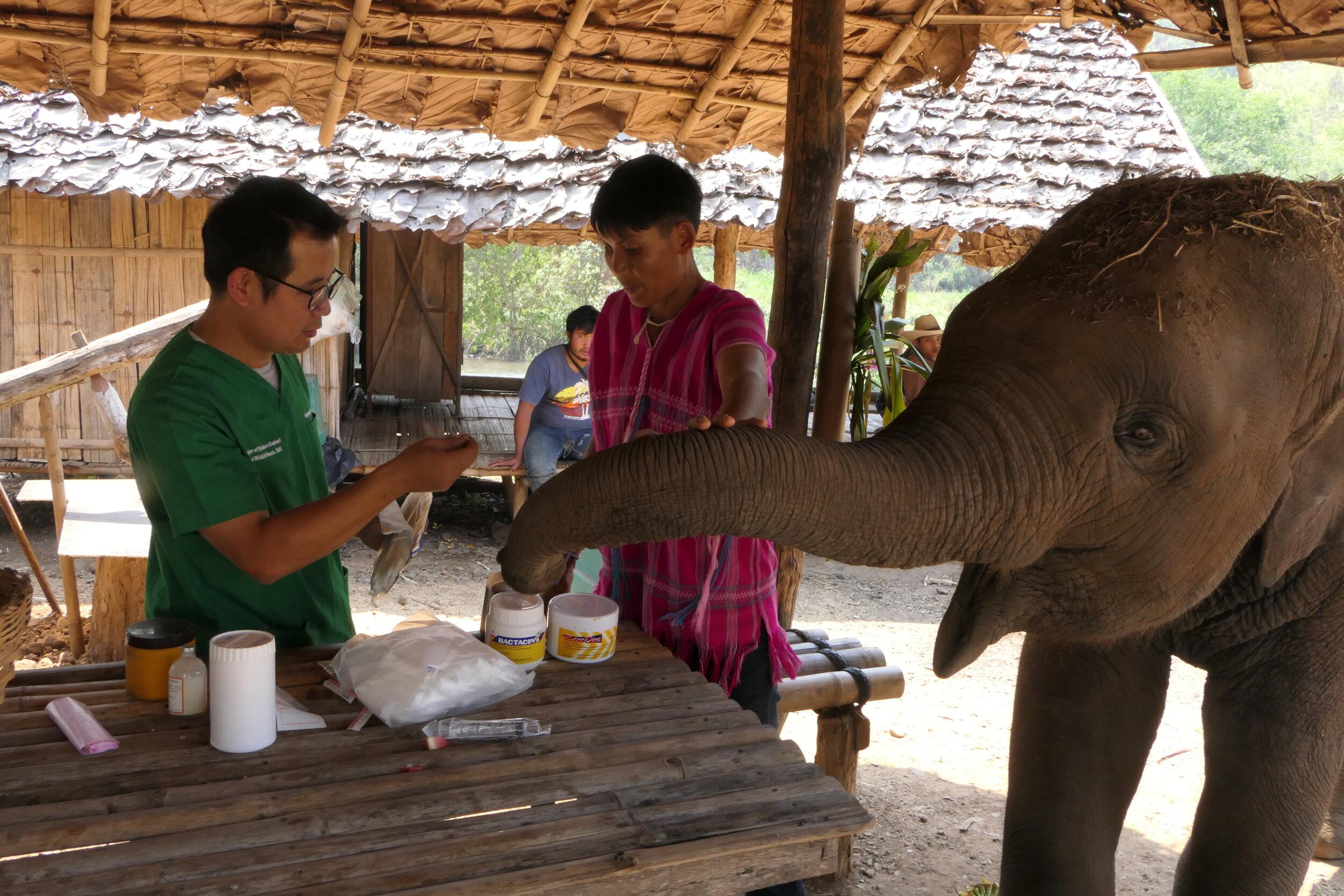Examining and prescribing treatment at a remote camp