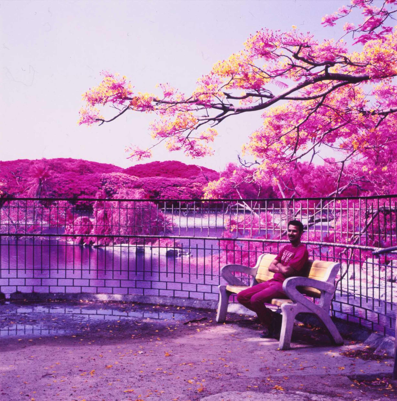 Lalbagh Botanical Gardens, Bangaluru, India