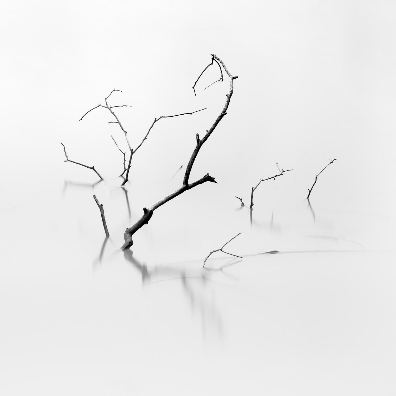 Lenswork-2.jpg