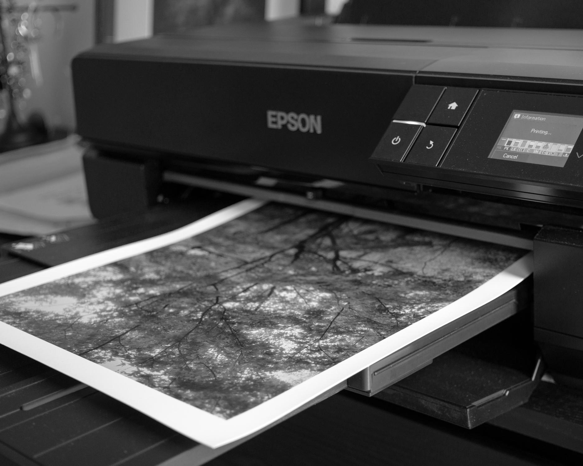 Prints-4.jpg