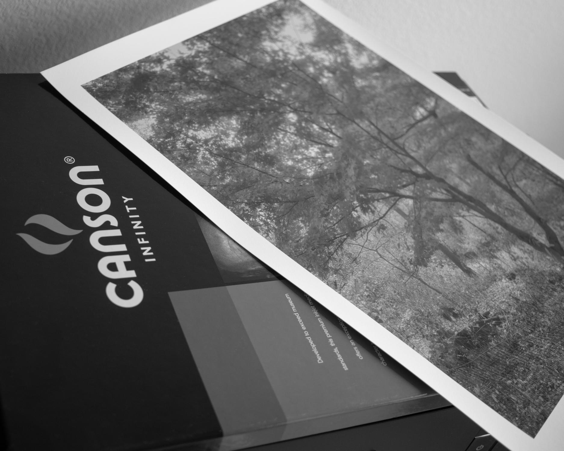 Prints-6.jpg