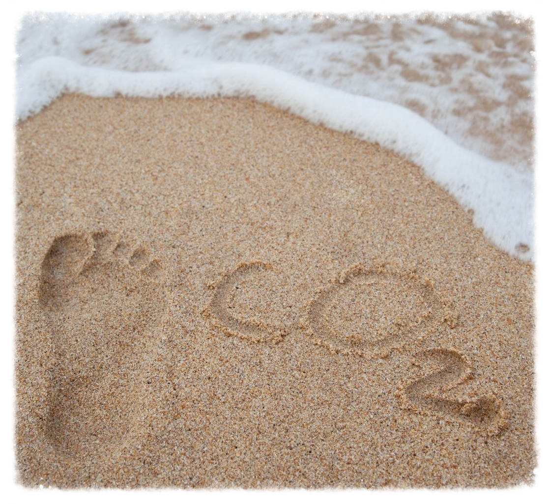 carbon-footprint.jpg