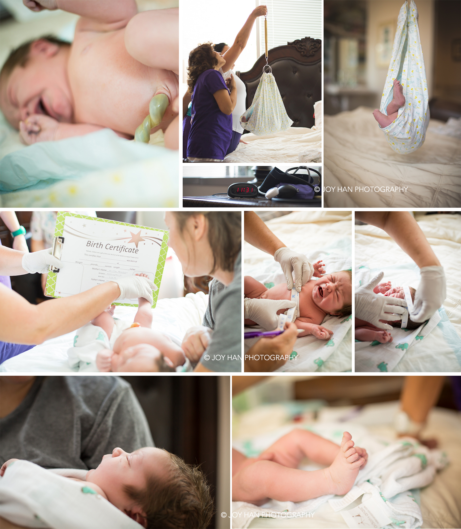 best maternity photographer in northern va