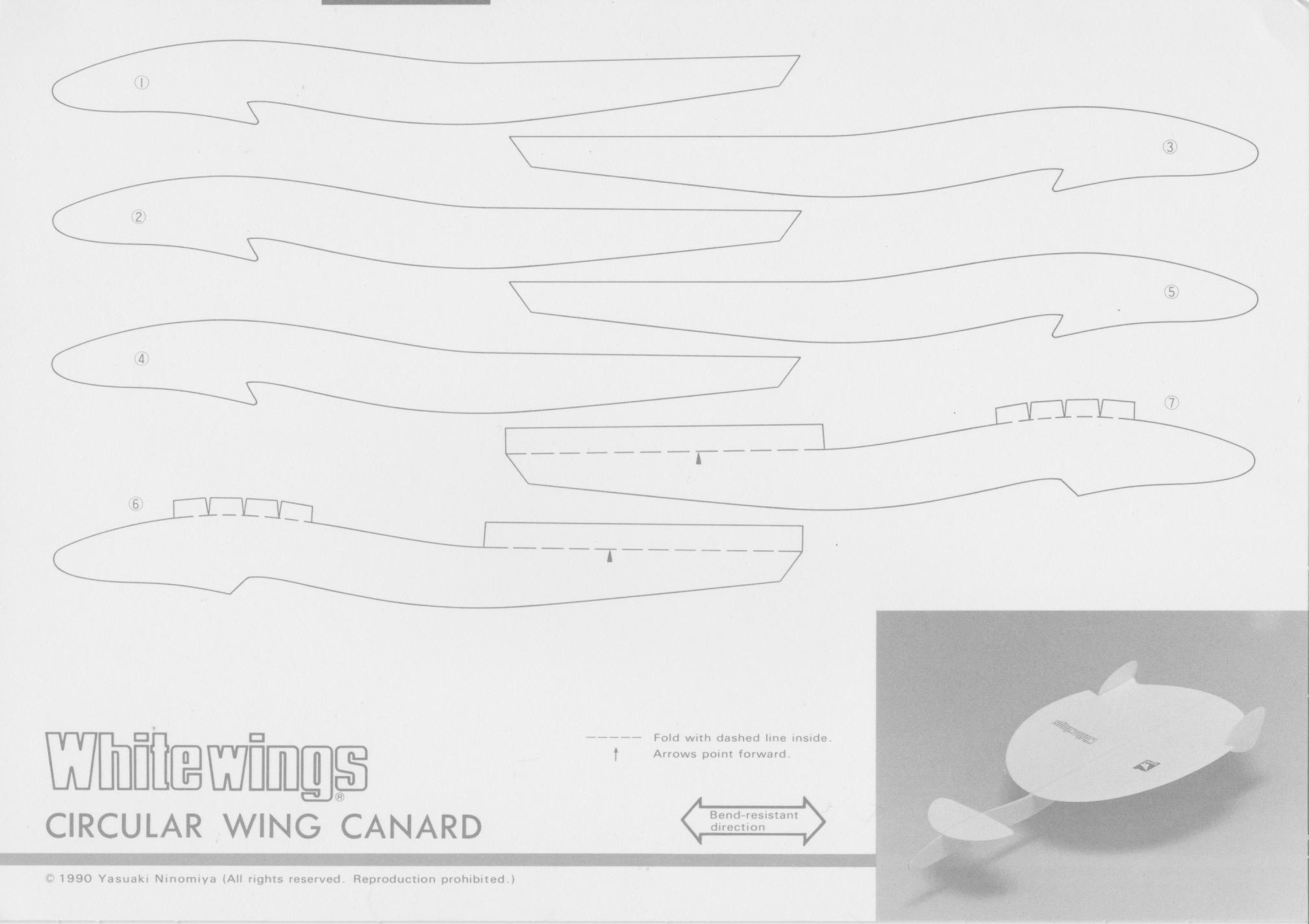 Circular_Wing_Canard_1.jpeg