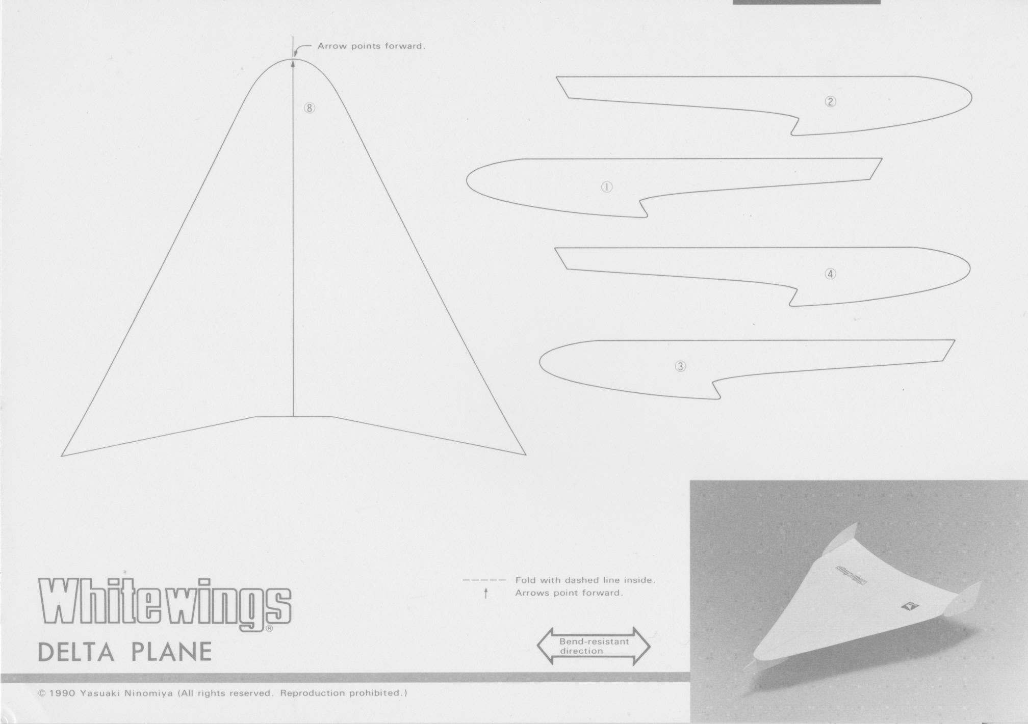 Delta_Plane_1.jpg