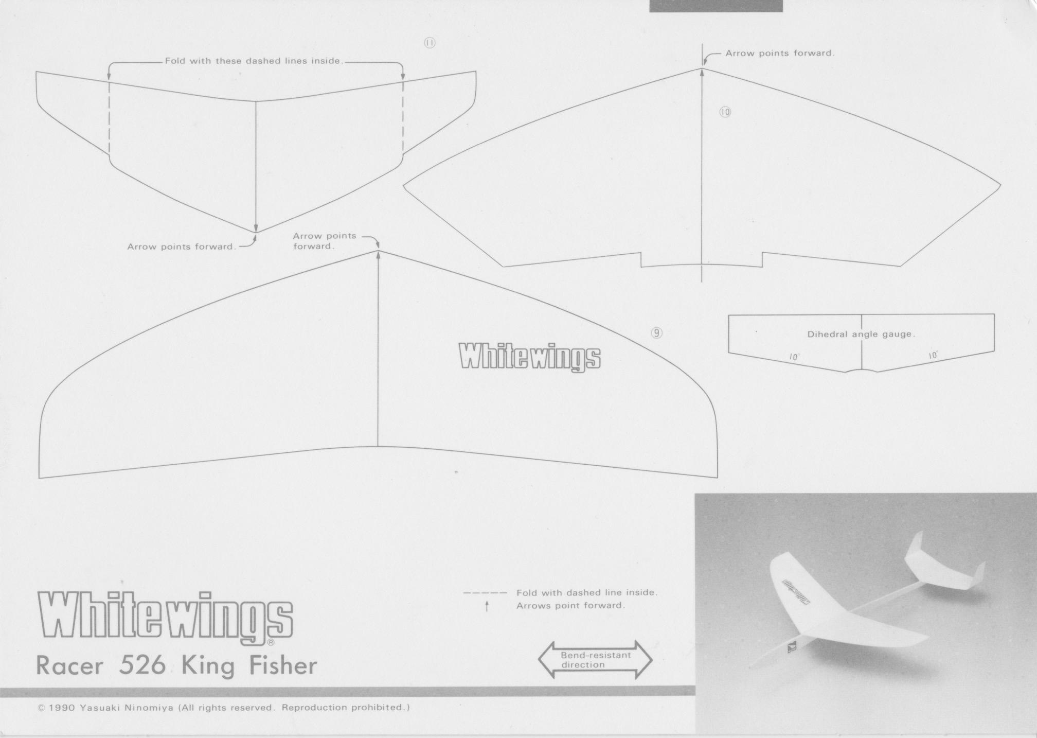 kingfisher_526_1.jpeg