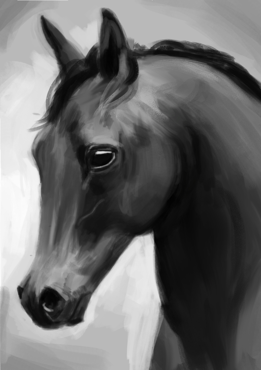 14-1-2018 horse.jpg