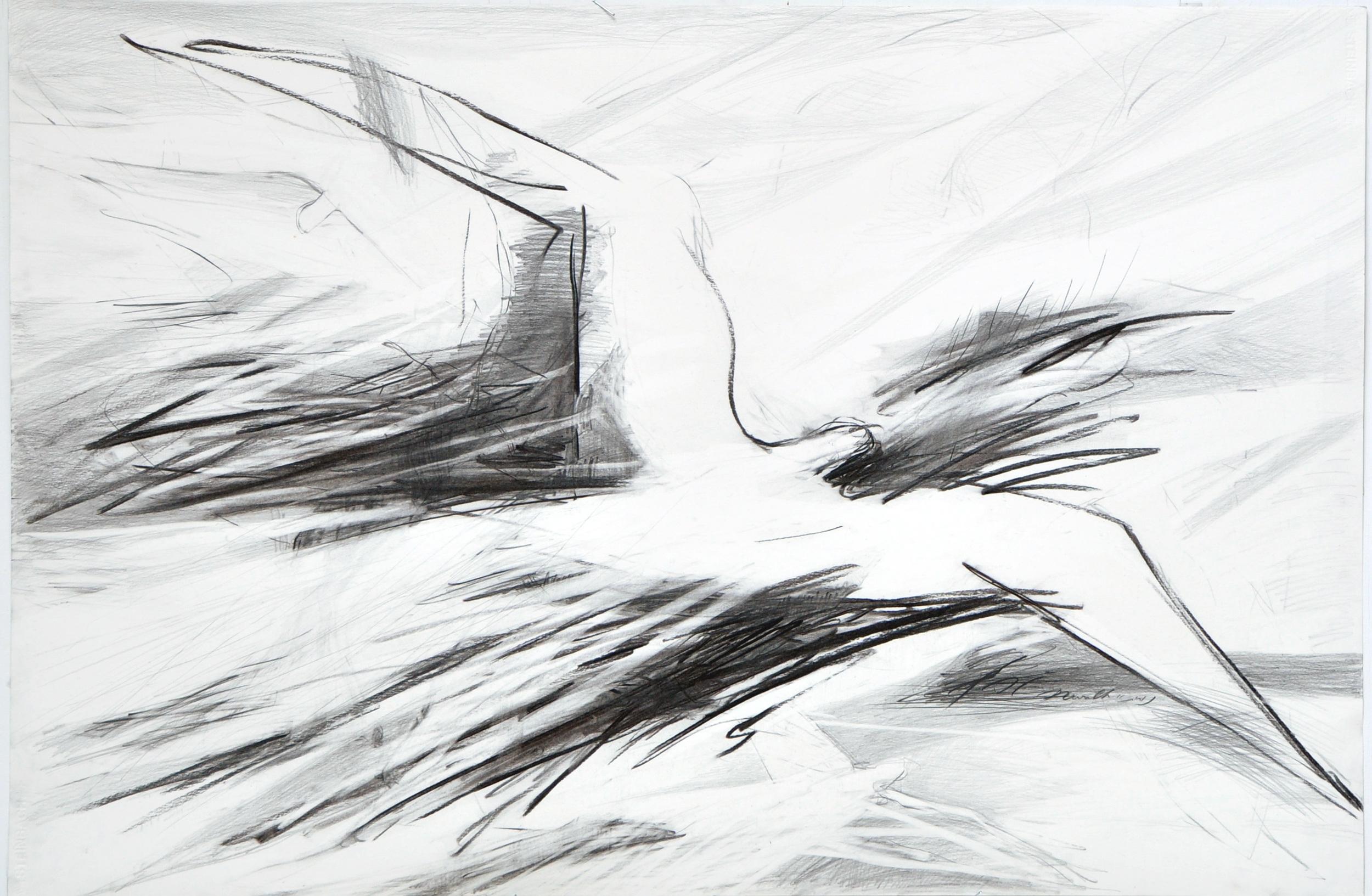 73x110 Angler coal on paper1743.jpg