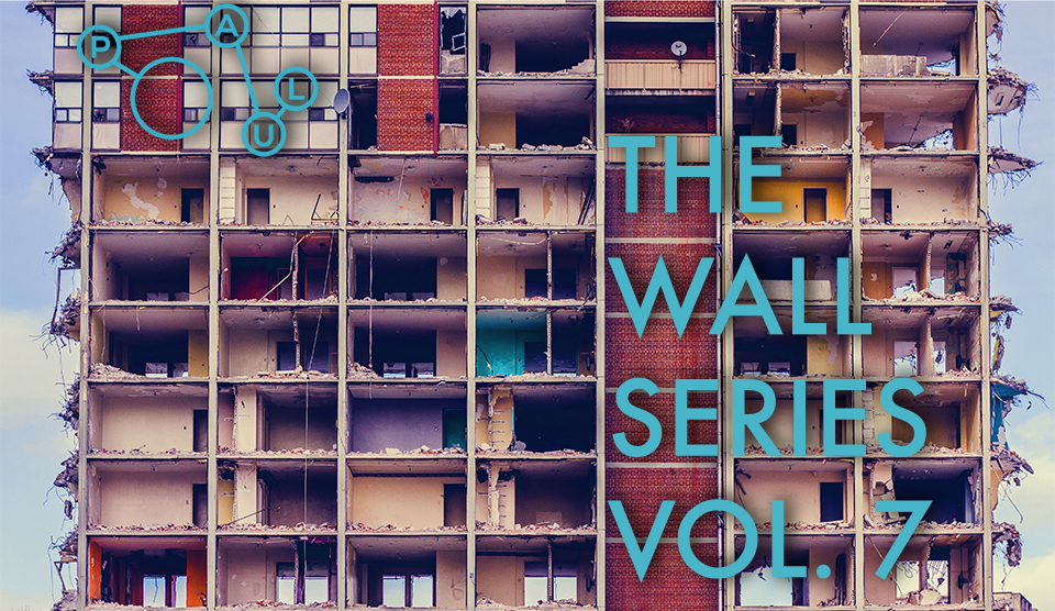 TheWallSeriesVol.7.jpg