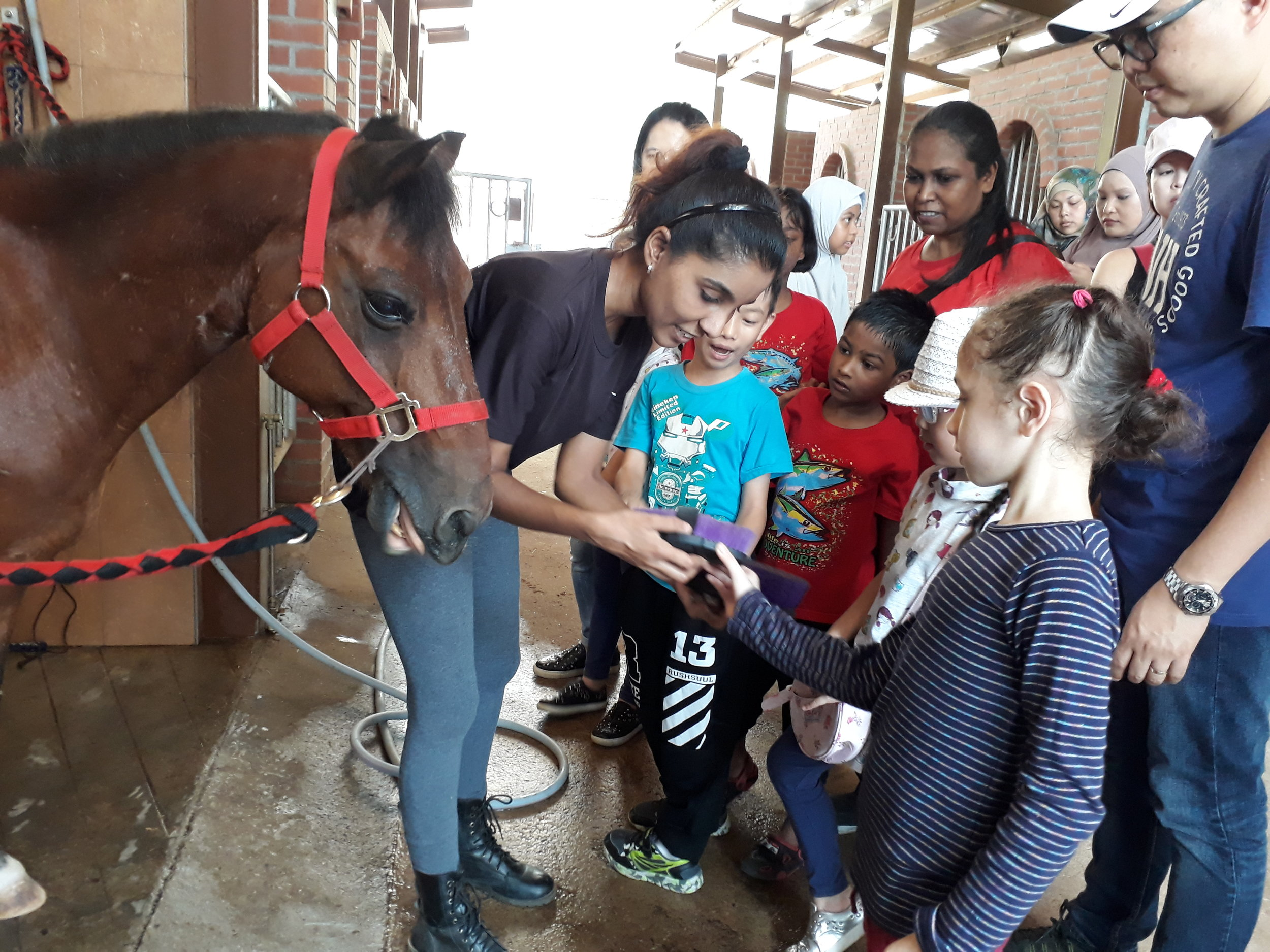 Healing Horses, a pilot initiative to launch the ASD Parents Support Group