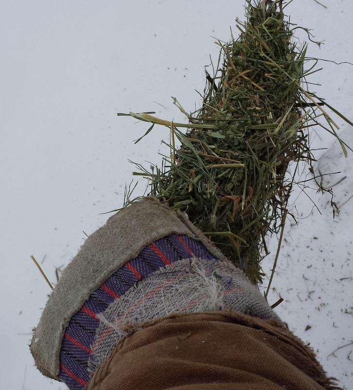 small bites of hay