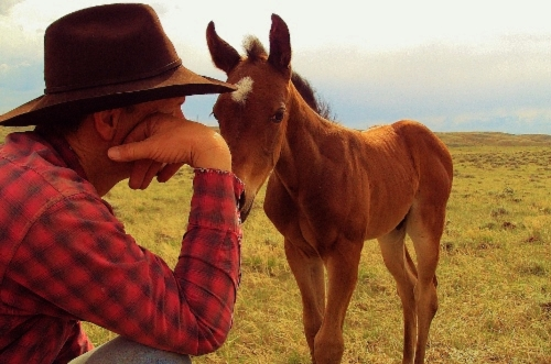chris with foal