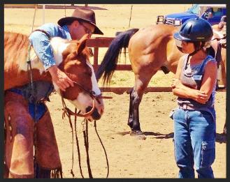 horses teaching hackamore bridling chris ellsworth horsemanship