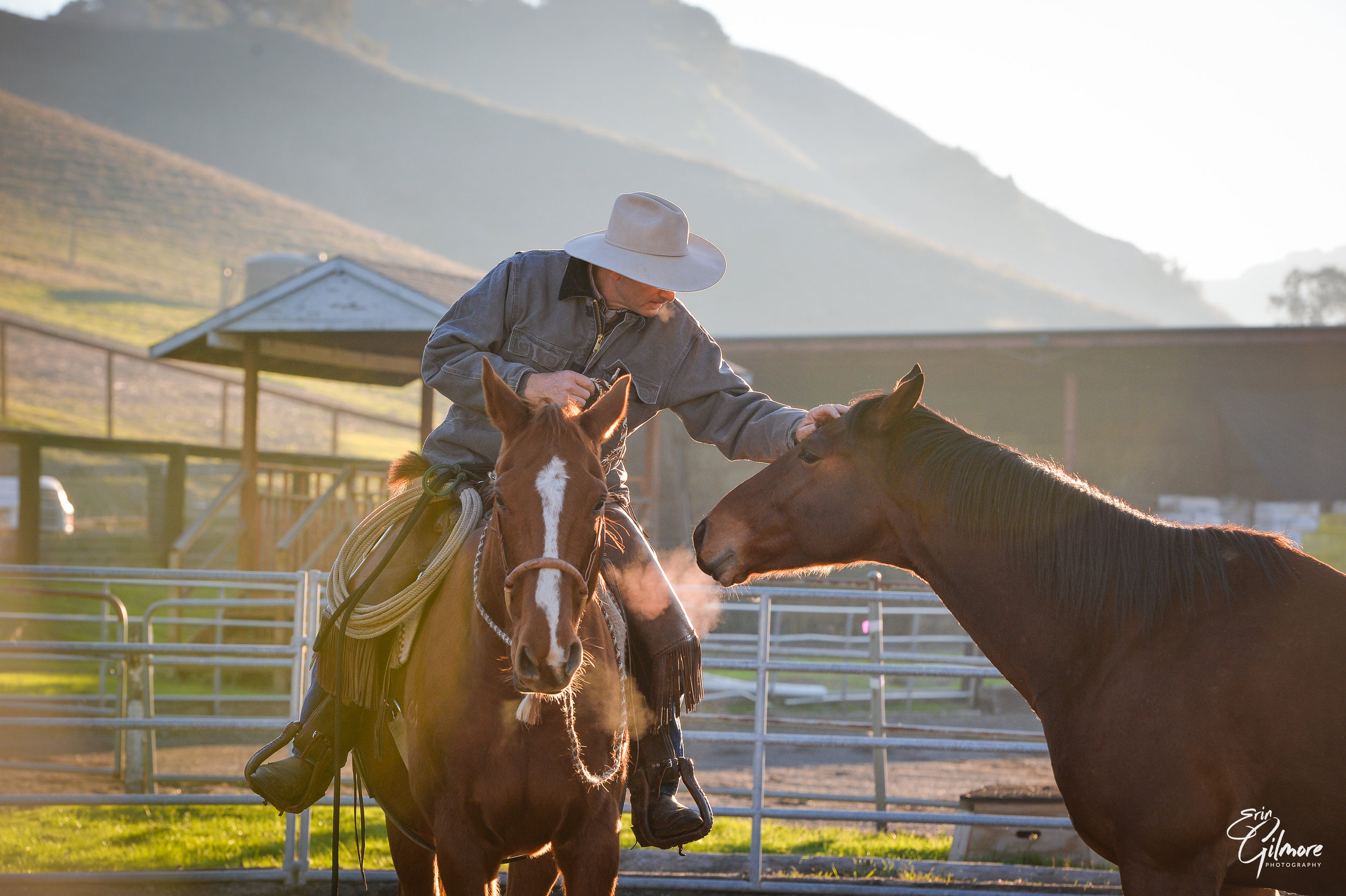 What could you and your horse accomplish if you could move past any obstacles in your path? Chris has worked with horses and humans for the past 40+ years. Whatever your goals, Chris is an expert at setting you and your horse up for success. Choose from these different clinics, all with plenty of one-on-one time, and experience firsthand how Chris can help you. Spots fill quickly so click on the Schedule page and sign up now!