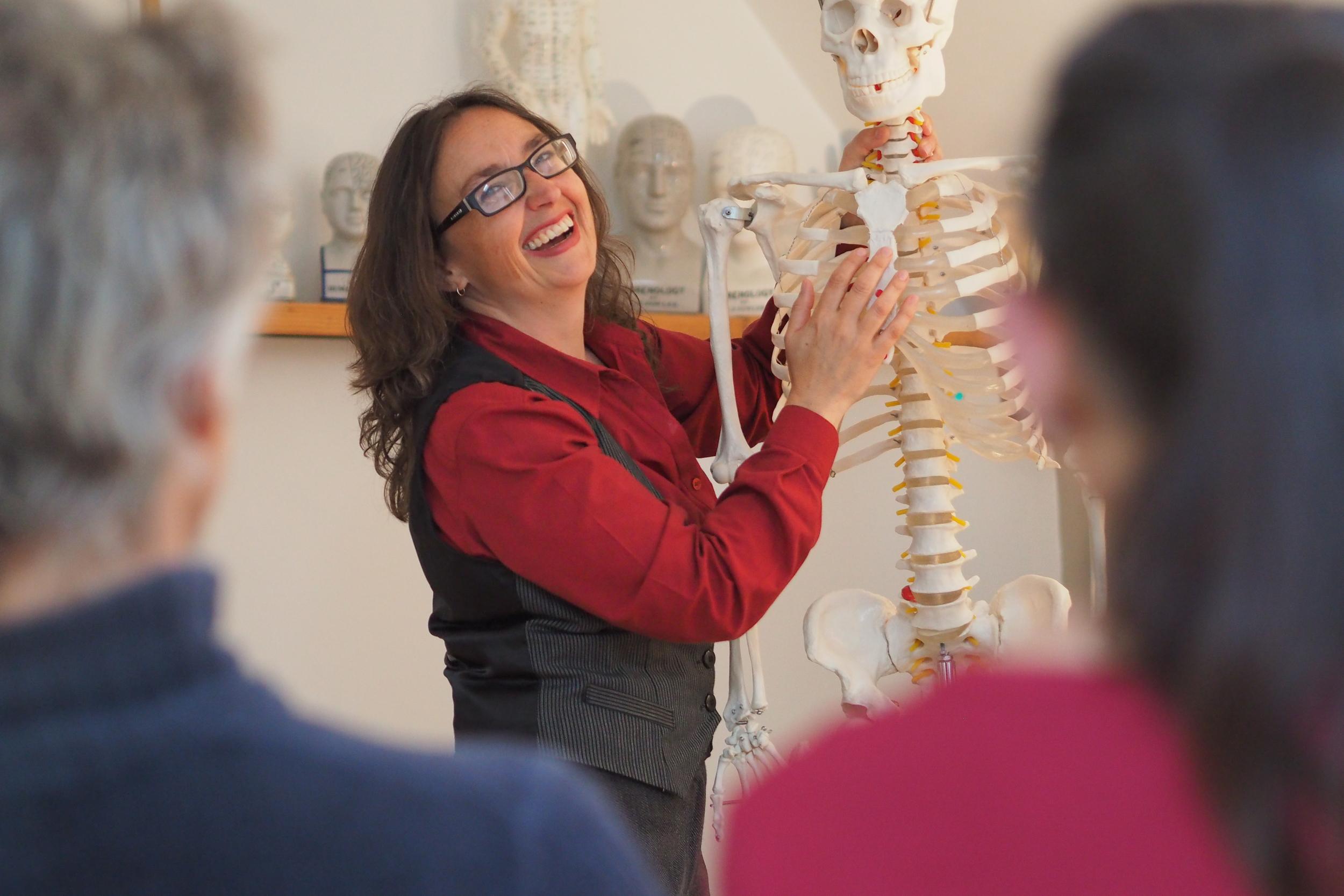 Courses & Mentoring -