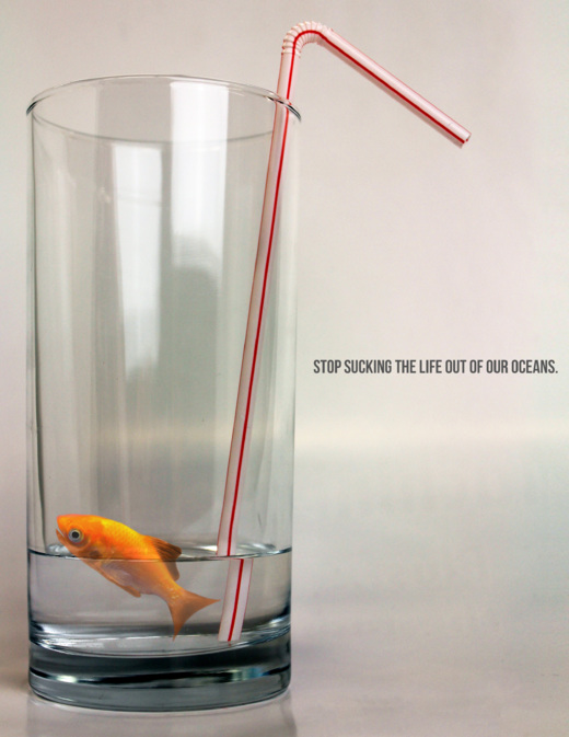 YRE 15-18, 1st place as campaign - Stop sucking the life out of our oceans - Canada.jpg