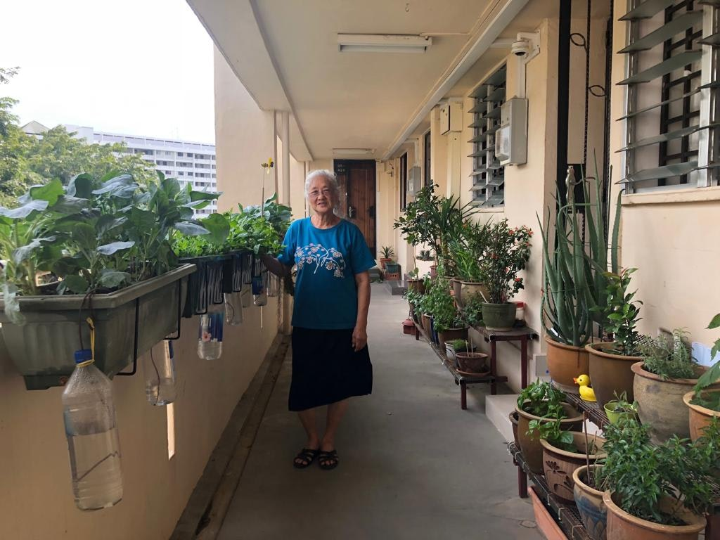 My Grandma and Her Mini-Garden
