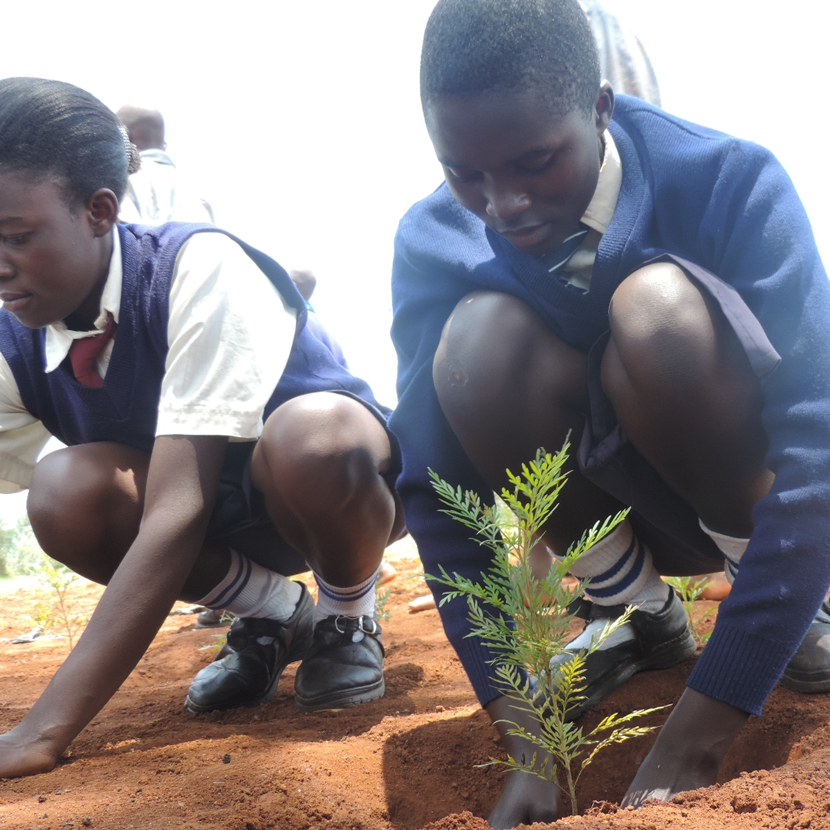 Kenya 2014 (3).JPG