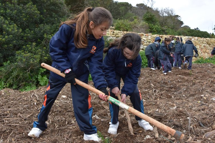 LEAF activities at Malta's famous Buskett woodland