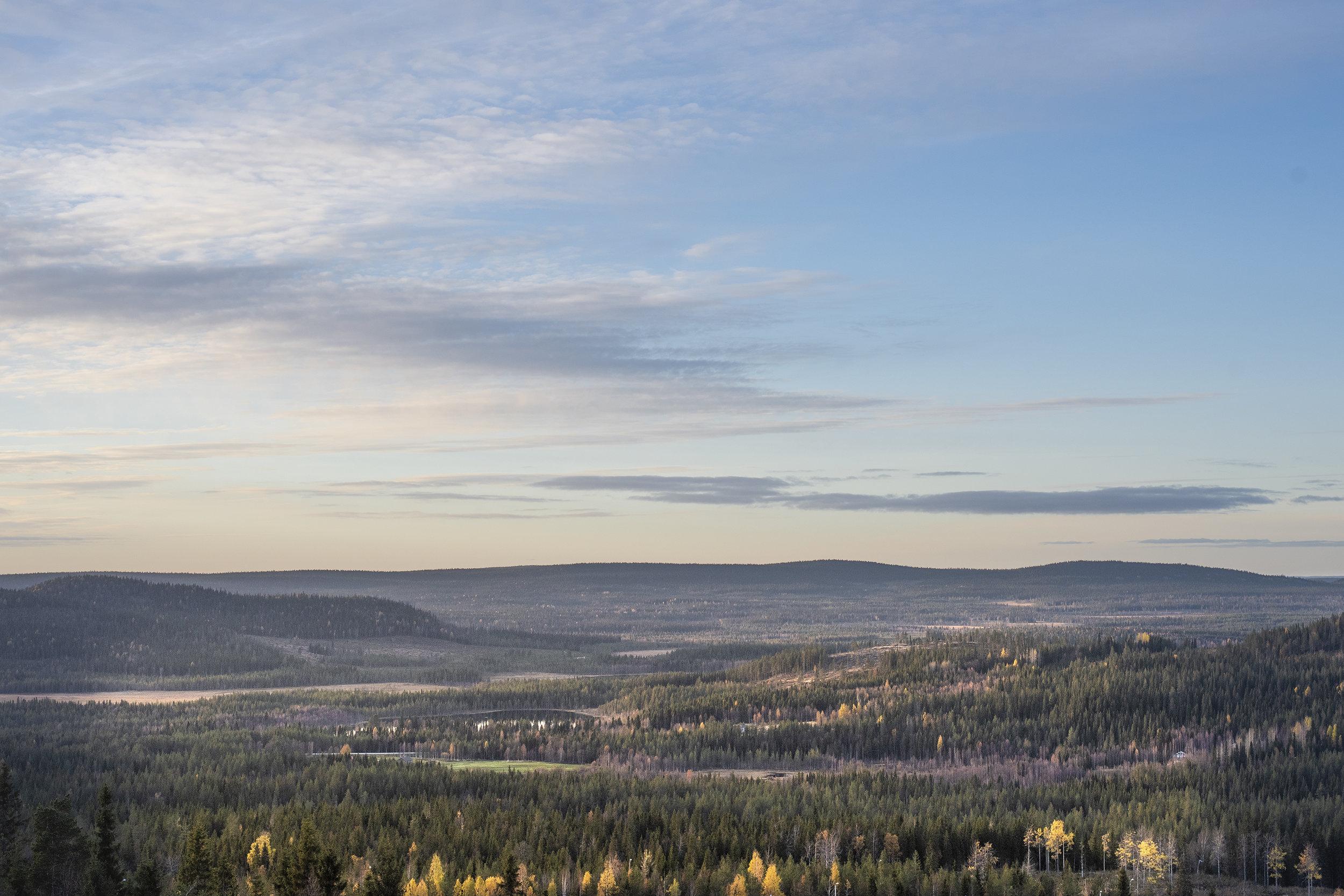 Vilma-Issakainen_46A.jpg