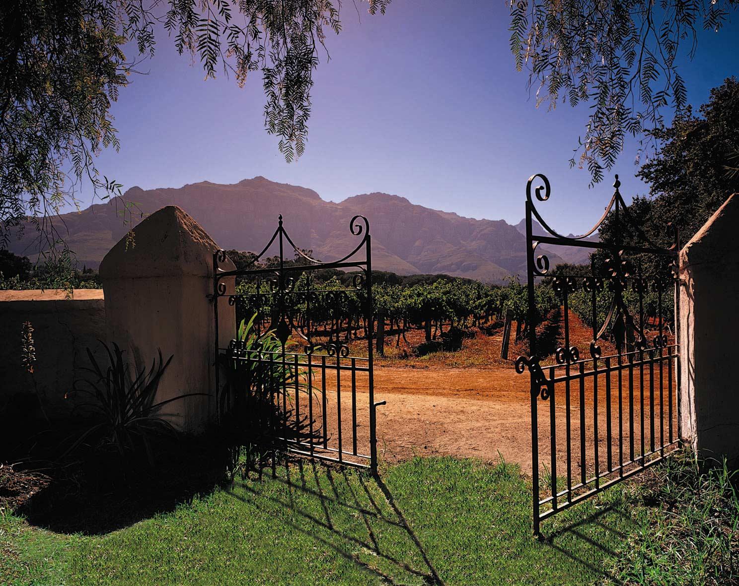 Wine Farm.jpg