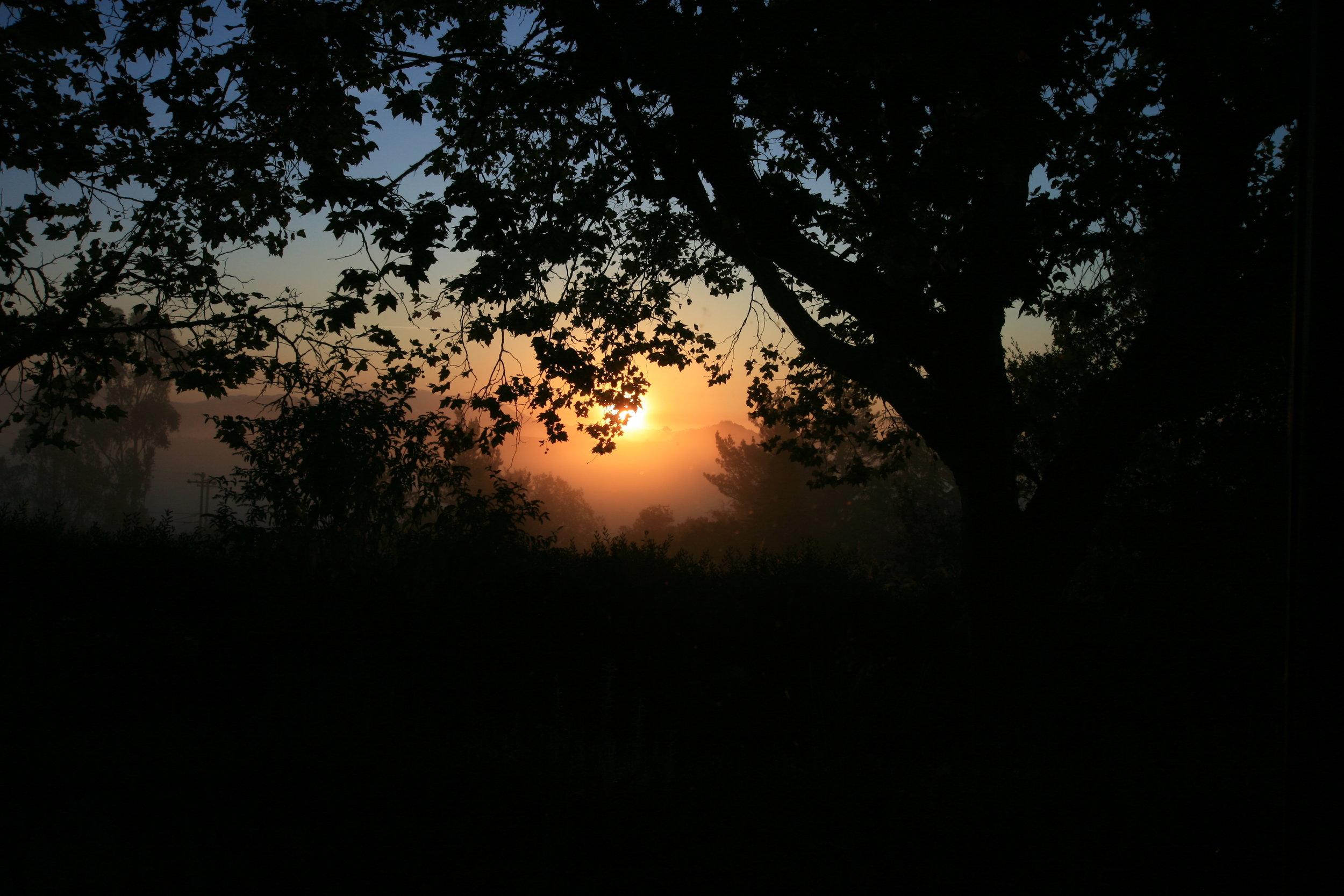 Sunrise over Healdsburg.