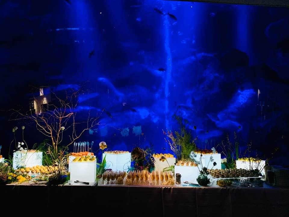 Enlighten Asia 2019 Party Sumida Aquarium 200名 / 2019.03.07