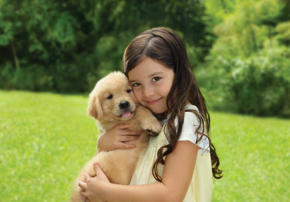 13- dog chow 2011_Page_5.jpg