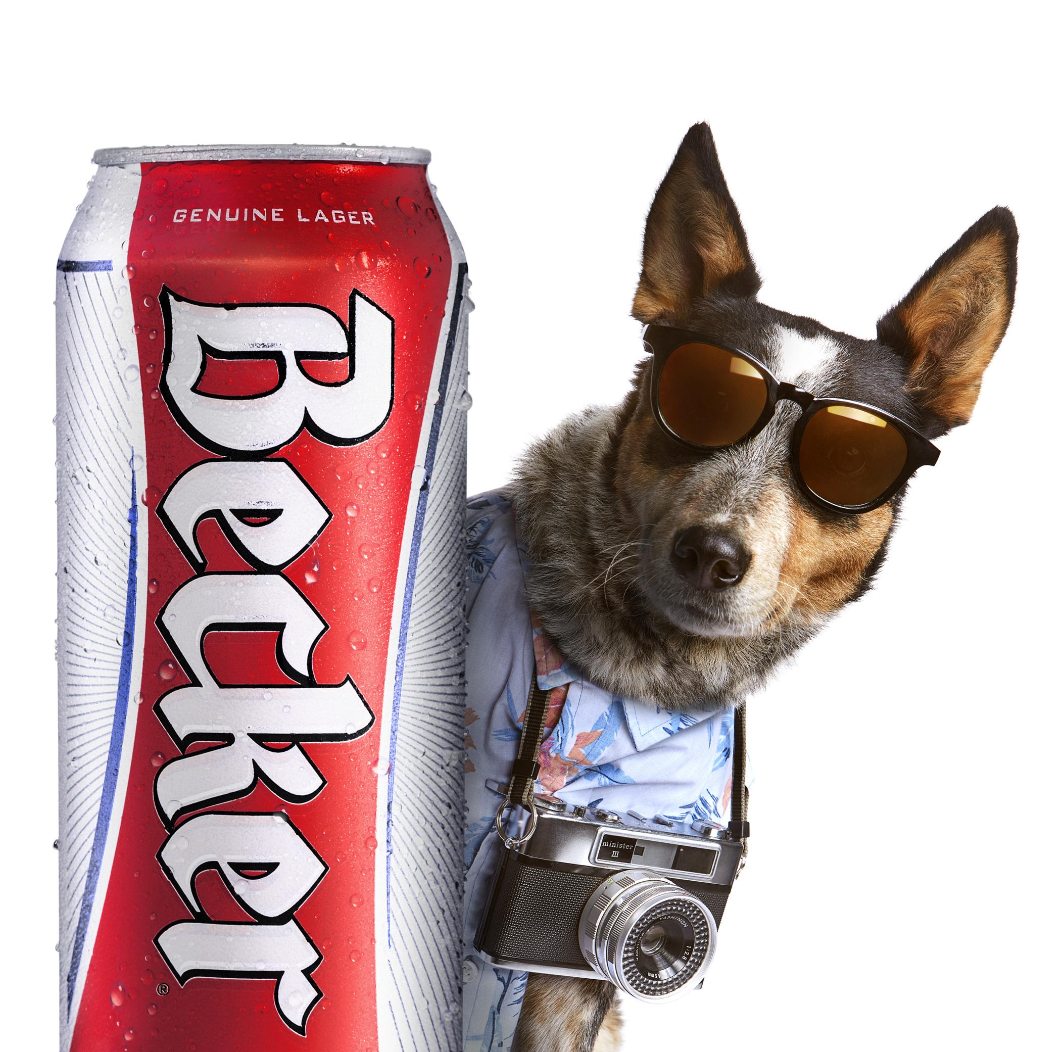 BECKER_Dog one _ok_1.jpg
