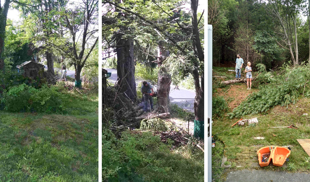The first two photos (taken on our neighbors yard)are of the back when Johnny was cutting down the first tree, the third of the front (taken at the front door)after some trees had come down.