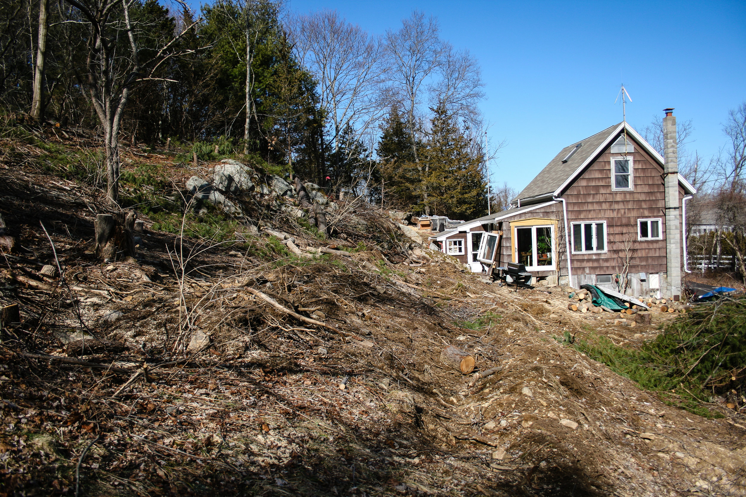 Trees on hillside cleared and swales roughed in