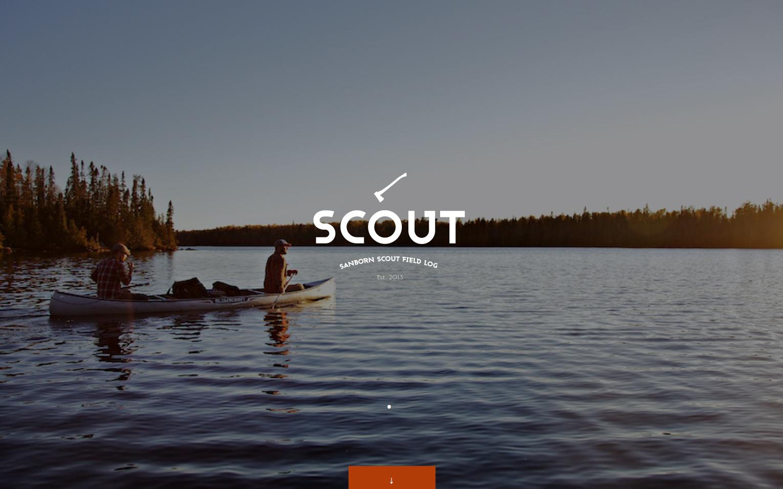 scout_2.jpg