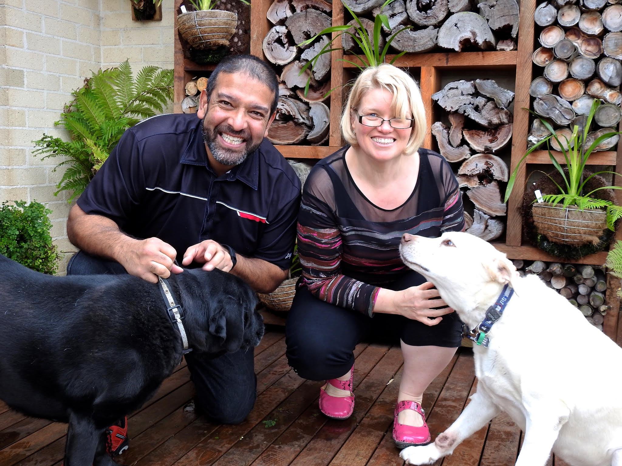 """Romance author, Jezz de Silva, with his First Reader and his """"zoo of geriatric rescue animals who eat him out of house and home."""""""