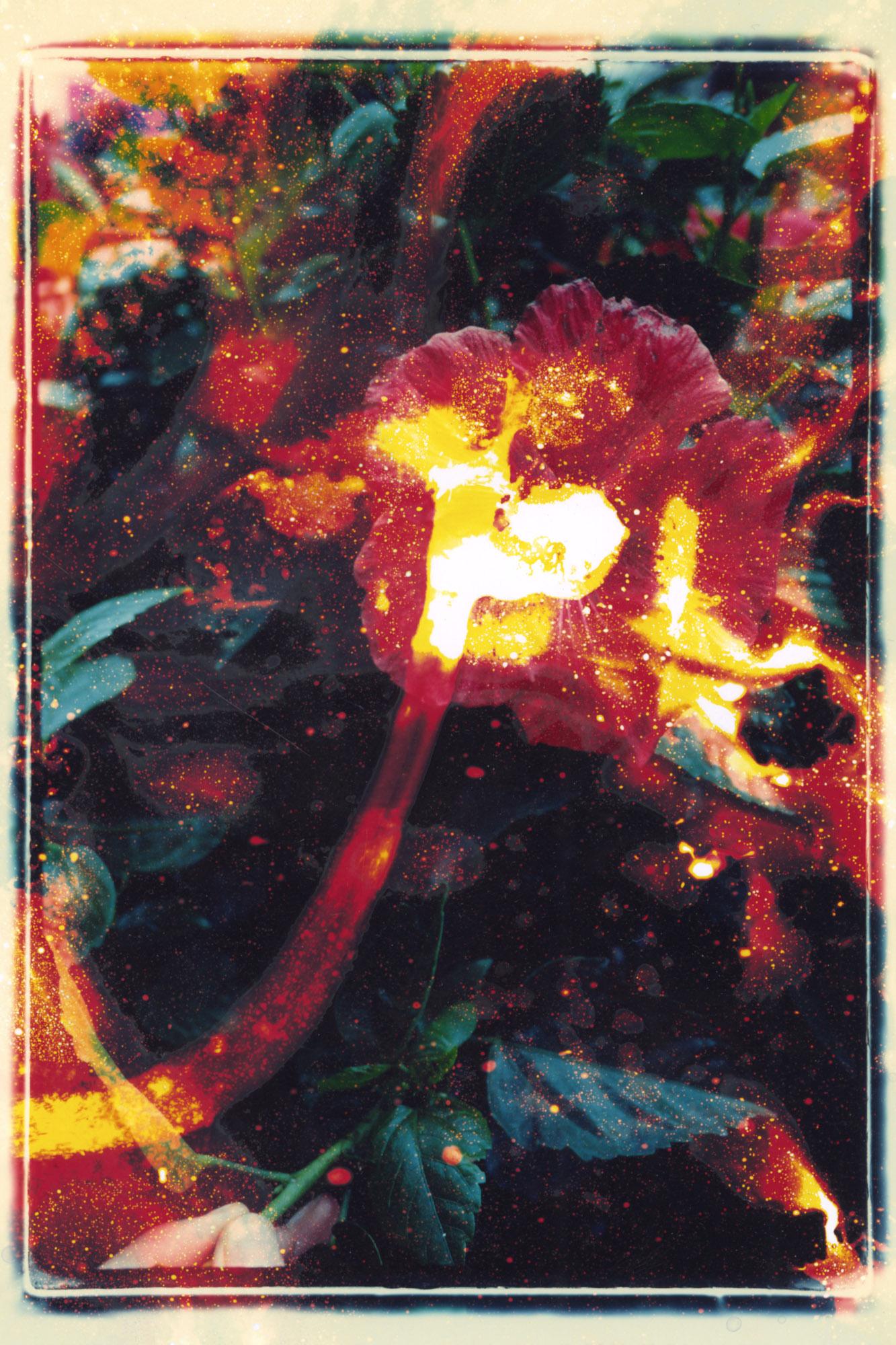 sprayprintscanScan-150115-0034.jpg