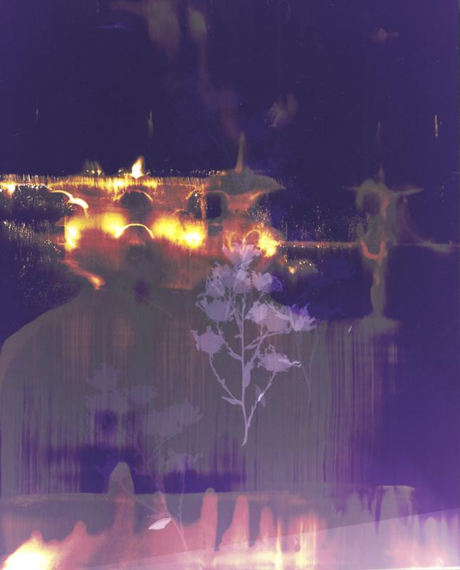 "Photogram     Chemical manipulated c print10"" x 8"""