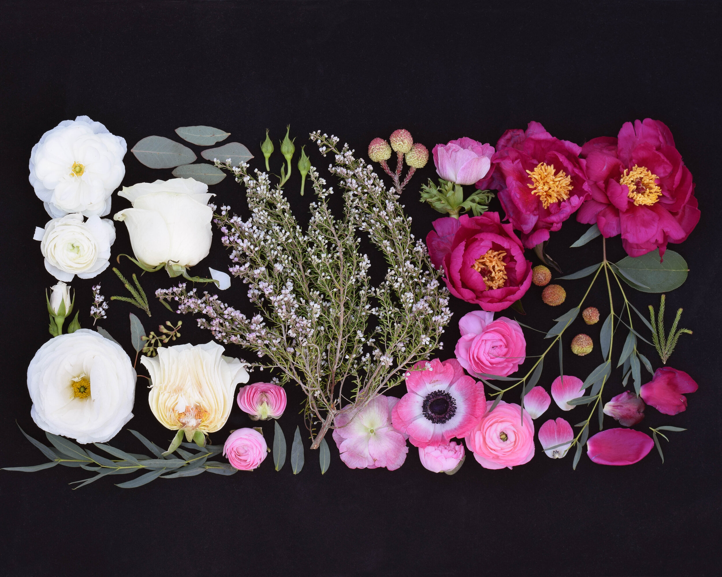 Amy Lynne Originals Bouquet - Beautifully photographed still-life collage of deconstructed wedding bouquet.