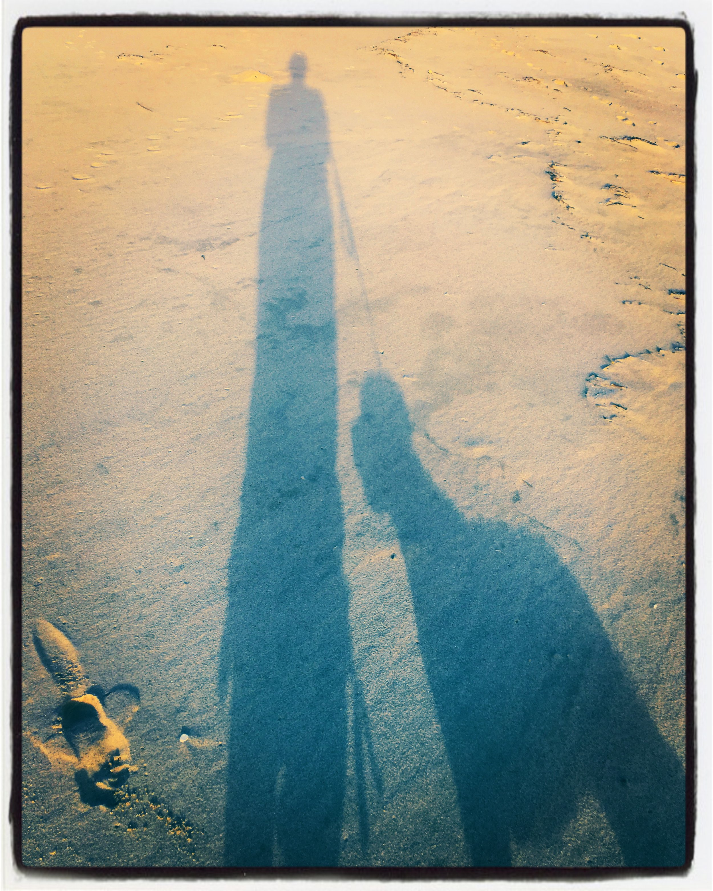 Me and My Shadows: Joy is being on a beach with your dog. Period. The end.
