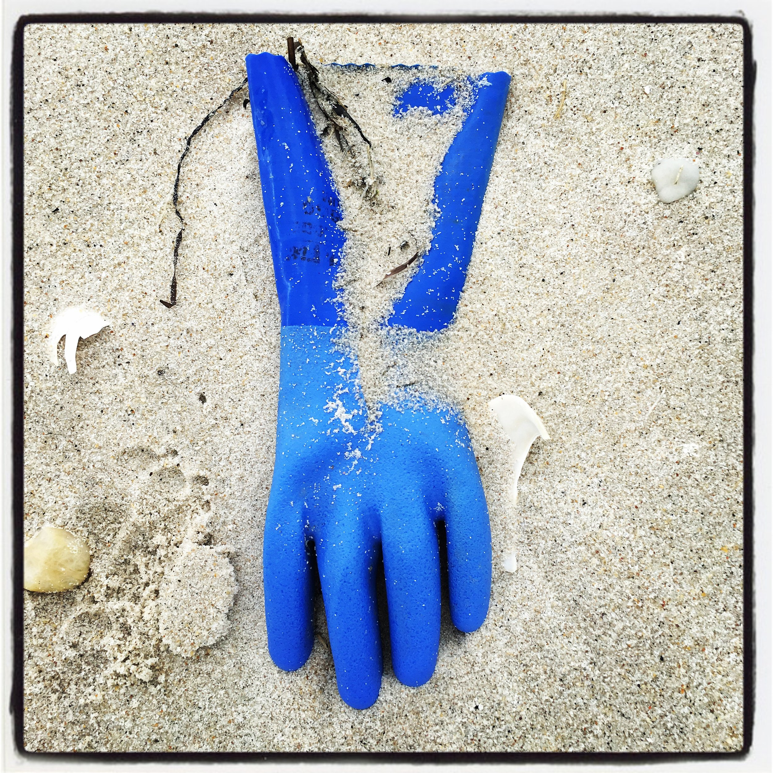 Blue Detritus: I'm always amazed at what washes up on a beach. Even trash can be beautiful.